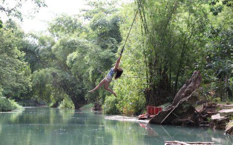 Swinging at Tarzan's Corner